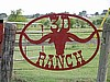 Ranch Sign Longhorn