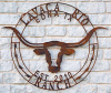 Custom 3ft longhorn sign for Lacey similar to photo below and the following changes: We would like i